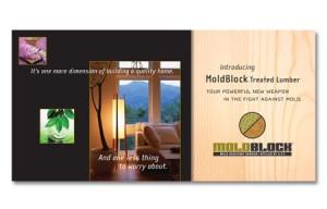 MoldBlock Lumber Brochure